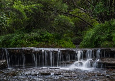 Along Wentworth Falls
