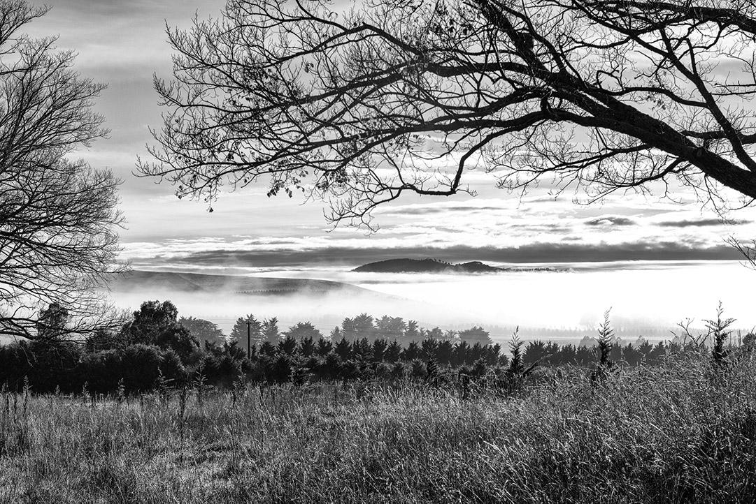 Mists Near Nulla Vale